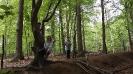 Ein Tag im Wald